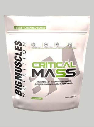 Picture of Bigmuscles Nutrition Critical Mass Malt Chocolate 11 lbs