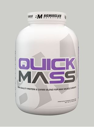 Picture of Bigmuscles Nutrition Quick Mass Strawberry 6lbs